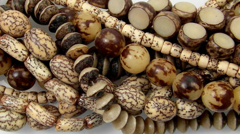 Nut and Shell Beads