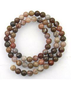 Petrified Wood 6mm Round Beads