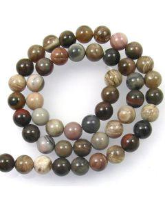 Petrified Wood 8mm Round Beads
