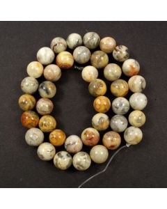 Crazy Lace Agate 10mm Round Beads
