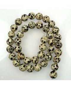 Dalmation Jasper 10mm Round Beads