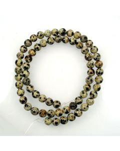 Dalmation Jasper 6mm Round Beads
