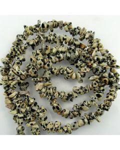 Dalmation Jasper 5x8mm approx. Chip Beads