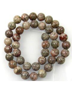 Fossil Crinoid 10mm Round Beads