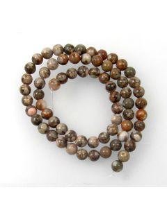 Fossil Crinoid 6mm Round Beads