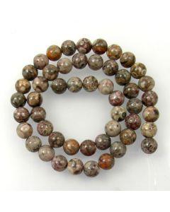 Fossil Crinoid 8mm Round Beads