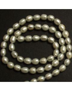 Freshwater Rice Pearls