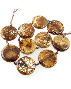 Leopard Agate 30mm (approx) Coin Beads
