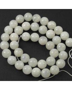 Moonstone WHITE 10mm Round Beads